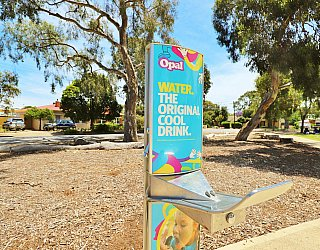 Rajah Street Reserve Facilities Drinking Fountain 1