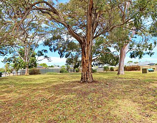 Stanley Street Reserve Southern End 1