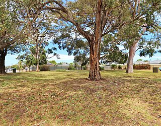 Stanley Street Reserve Southern End 2