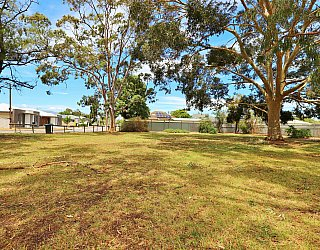 Stanley Street Reserve Southern End 3