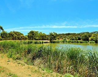 Lucretia Way Reserve 2