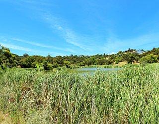 Lucretia Way Reserve 4