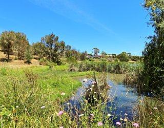 Lucretia Way Reserve 10