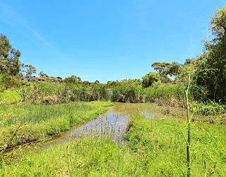 Lucretia Way Reserve 14