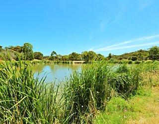 Lucretia Way Reserve 18