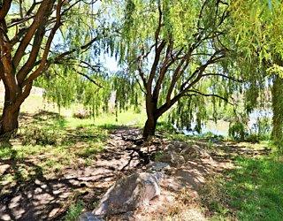 Lucretia Way Reserve 22