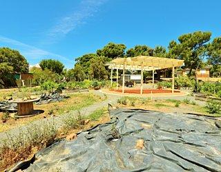 Newland Avenue Reserve Marino Community Garden 1