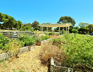 Newland Avenue Reserve Marino Community Garden 3