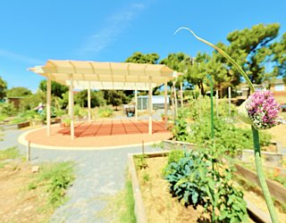 Newland Avenue Reserve Marino Community Garden Pergola 2
