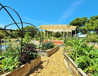 Newland Avenue Reserve Marino Community Garden Pergola 3