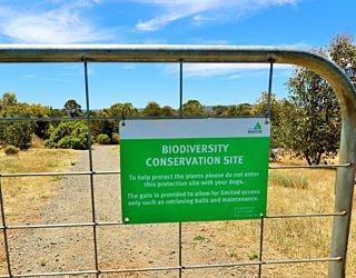 Reserve Street Reserve Dog Park Biodiversity Area 3