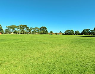 Marion Oval Western Field Cricket 1