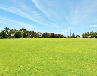 The Cove Sports Eastern Field Oval 6