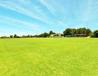 The Cove Sports Western Field 6