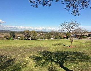 Barton Drive Reserve Image 24
