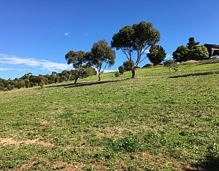 Capella Drive Reserve Image 2