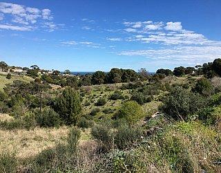 Capella Drive Reserve Image 25