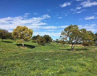 Capella Drive Reserve Image 29