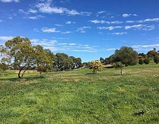 Capella Drive Reserve Image 30