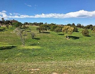 Capella Drive Reserve Image 36
