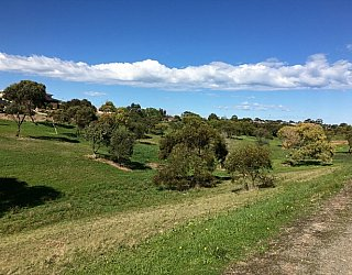 Capella Drive Reserve Image 4