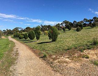 Capella Drive Reserve Image 8