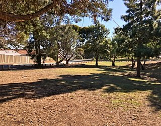 Central Avenue Reserve Image 17