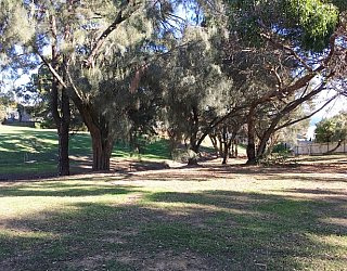 Central Avenue Reserve Image 19