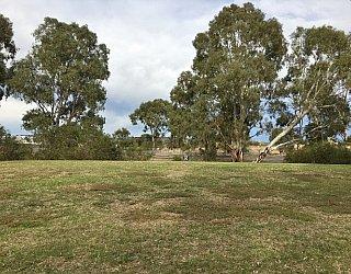 Cohen Court Reserve Image 5
