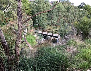 Cormorant Drive Reserve Image 13