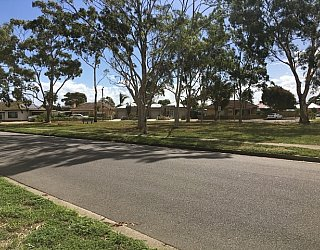 Cowra Crescent Reserve Image 10