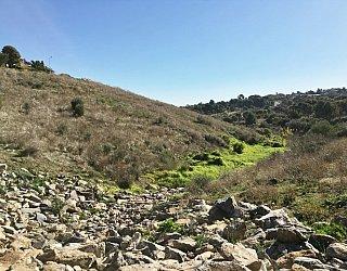 Glade Crescent Reserve Image 24
