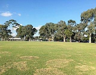 Glandore Oval Image 17