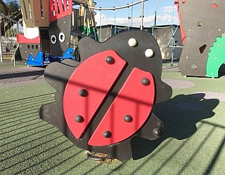 Glandore Oval Image 6