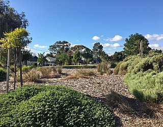 Harbrow Grove Reserve Image 10