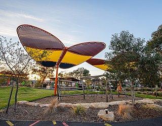 Jervois Street Reserve Senior Playground New Butterflies 5