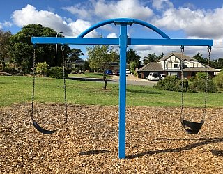 Lapwing Street Reserve Swing 2