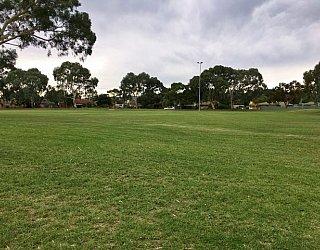 Mitchell Park Oval Grass 1