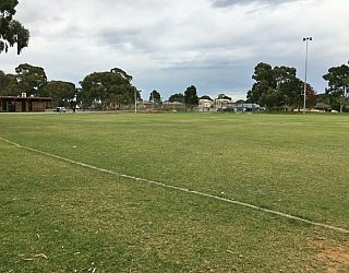 Mitchell Park Oval Grass 4