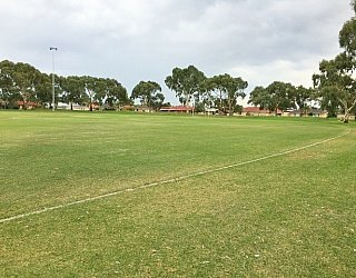 Mitchell Park Oval Grass 5