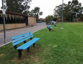 Mitchell Park Oval Seating 1