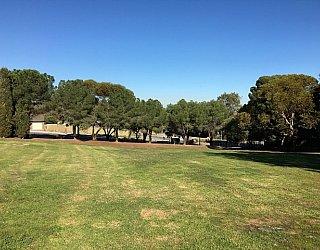 Nannigai Drive Reserve Grass 1