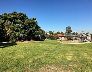 Oakvale Road Reserve Grass 2