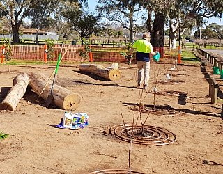 Parsons Grove Reserve Community Planting Day 3