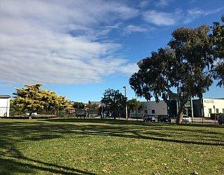 Ramsay Avenue Reserve Image 20