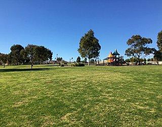 Southbank Boulevard Reserve Grass 3