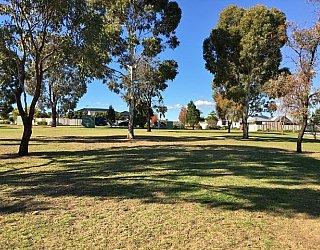 Southbank Boulevard Reserve Grass 5