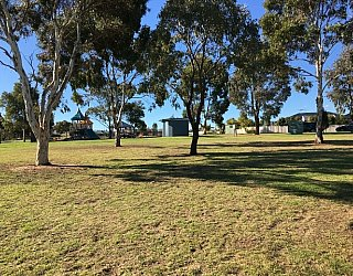 Southbank Boulevard Reserve Grass 6