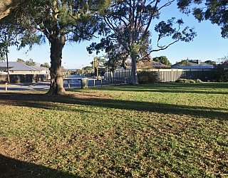 Stanley Street Reserve Grass 1