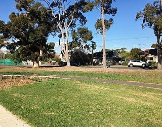 Warradale Park Reserve Grass 3